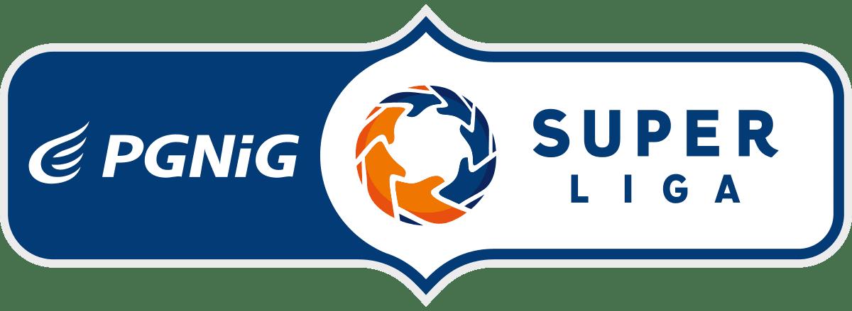 PGNiG Superliga-logo-poziom