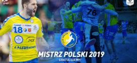PGE Vive Kielce ponownie w złocie!